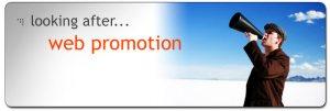 web-promotion-banner