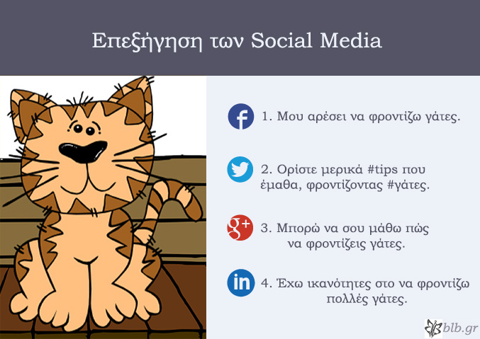 media_explainedcat